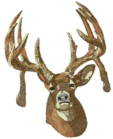 Custom Embroidery Digitizing Picture