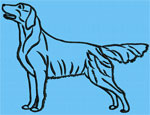 Flat-Coated Retriever Standing #1 - Vodmochka Machine Embroidery Design Picture - Click to Enlarge
