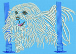 Maltese Agility #6 - Vodmochka Machine Embroidery Design Picture - Click to Enlarge
